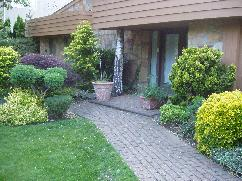 softscaping landscaping hardscpaing